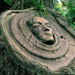 Giant Cabochons: Tree Spirit Carvings by KeithJennings