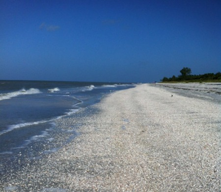 Morning on Sanibel Island Beach